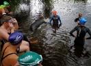 Celler Triathlon 2014 - Öffentliches Training Schwimmen_5