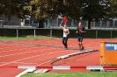 Celler Triathlon 2016 - Laufen_25