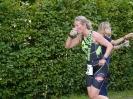 Celler Triathlon 2016 - Laufen_26
