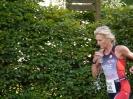 Celler Triathlon 2016 - Laufen_30
