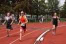 Celler Triathlon 2016 - Laufen_70