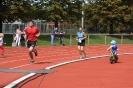 Celler Triathlon 2016 - Laufen_82