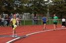 Celler Triathlon 2016 - Laufen_90