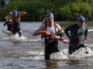 Celler Triathlon 2016 - Schwimmen_135