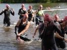 Celler Triathlon 2016 - Schwimmen_167