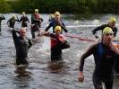Celler Triathlon 2016 - Schwimmen_35