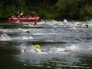 Celler Triathlon 2016 - Schwimmen_3