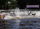 Celler Triathlon 2017 - Schwimmen_106