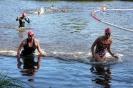 Celler Triathlon 2017 - Schwimmen_21